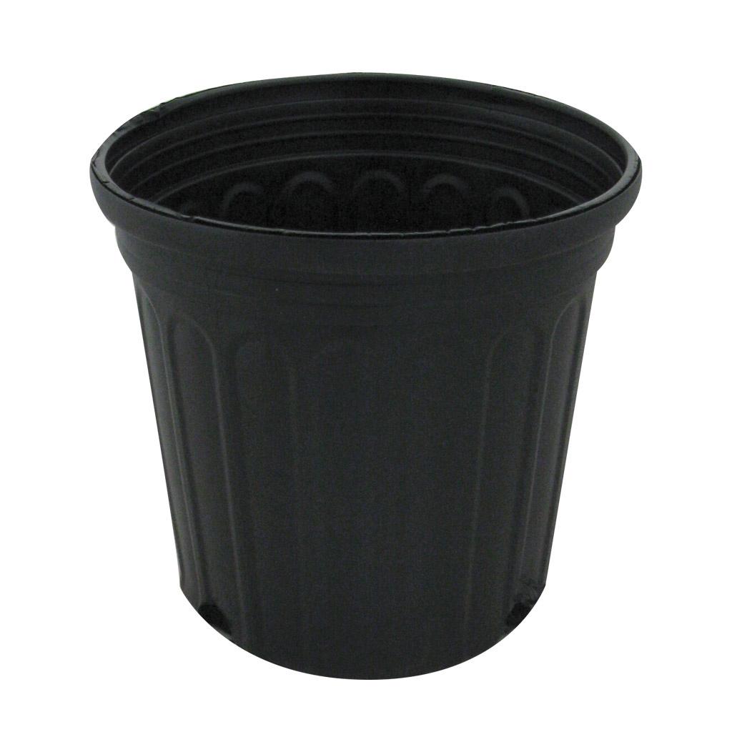 Custom Tainer 300sc Black